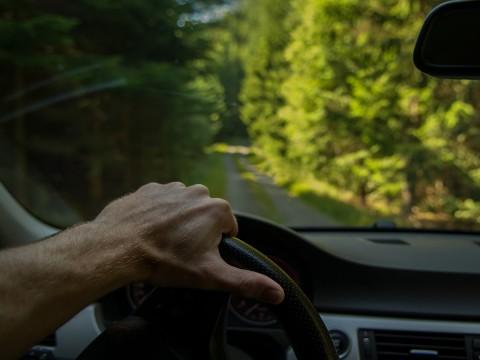 driving utes