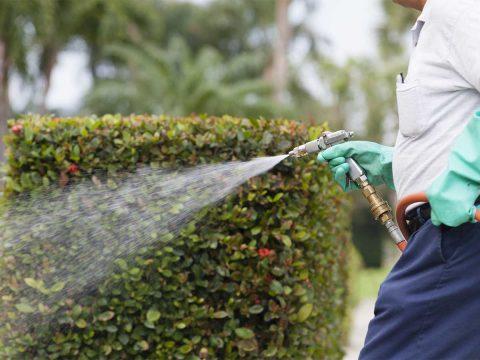 Spray gun, spray wand, spray nozzle, backpack sprayer, trolley sprayer, chemical sprayer, pest control.