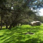 Bullhole North Camp image