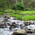 Rockhole Camp image