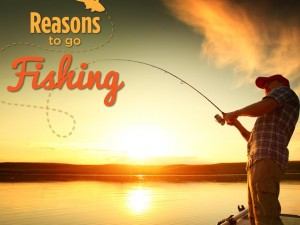 Reasons to Go Fishing