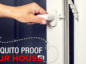 Mozzie Proof Your House