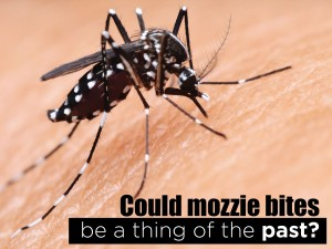 Could Mozzie Bites be a Thing of the Past?