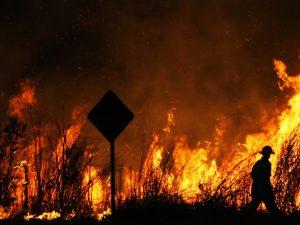 Bushfire season basics: what you need to know